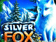 Polar Fox играть на деньги в казино Эльдорадо